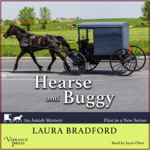 Hearse and Buggy Audiobook